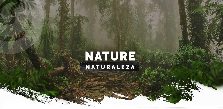 tour-ciudad-perida-expotur-lost-city-trek-nature-naturaleza-sierra-nevada-santa-marta-colombia