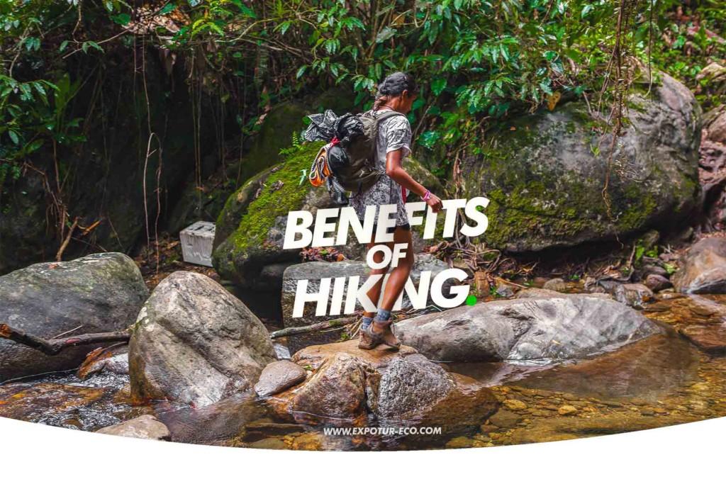 beneficios-de-practicar-senderismo-expotur-lost-city-trel-colombia-benefits-of-hiking