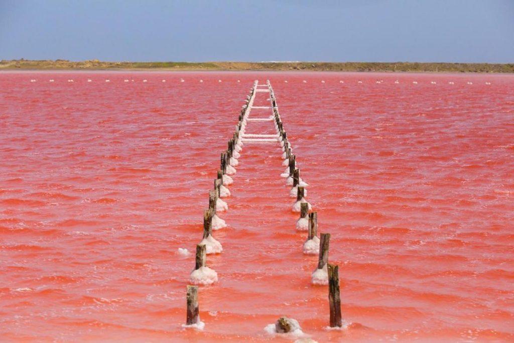salinas de galerazamba mar rosado de colombia