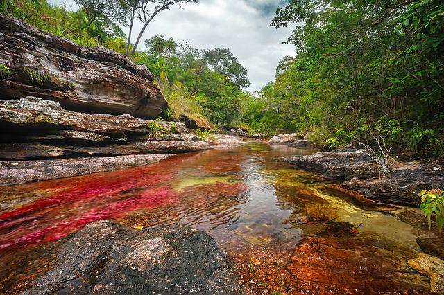 caño cristales, el rio de colores