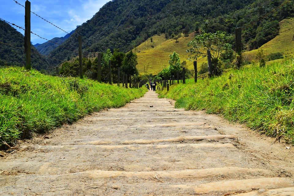valle de cocora como llegar