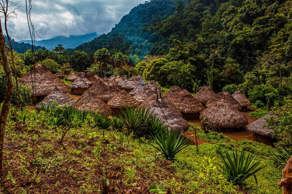 Mutanyi. the Lost City Colombia
