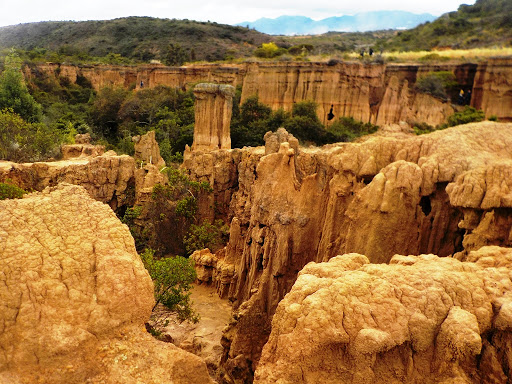 desierto de la tatacoita desierto de nemocón desiertos de colombia